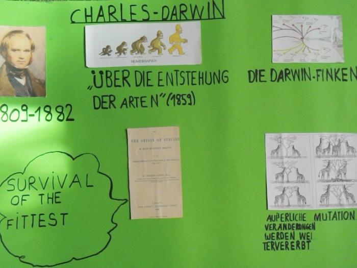 Plakat Bio Darwin